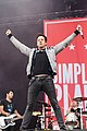 20170617-195-Nova Rock 2017-Simple Plan-Pierre Bouvier.jpg
