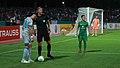 2018-08-17 1. FC Schweinfurt 05 vs. FC Schalke 04 (DFB-Pokal) by Sandro Halank–133.jpg