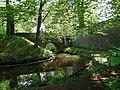 20180504535DR Hermsdorf (Ottendorf-Okrilla) Hermsdorfer Schloßpark.jpg