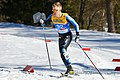 20190227 FIS NWSC Seefeld Men CC 15km Dagur Benediktsson 850 4542.jpg