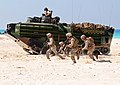 22nd Marine Expeditionary Unit storms the beach during Bright Star 2009 DVIDS212886.jpg