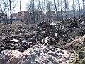 25 апреля 2010 года. Невская Дубровка. На этом снимке - свалка отходов на полях, рядом с местом строительства коттеджей. - panoramio (5).jpg