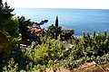 30.12.16 Dubrovnik Lovrijenac Gradac Park 41 (31832992042).jpg