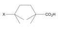 4-substitued octanoic acid.png