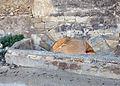 576 Portal dels Jueus, a Remolins (Tortosa), cara exterior.JPG