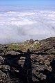 Açores 2010-07-22 (5132320589).jpg