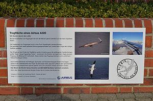 A320 WingDetails 05.jpg