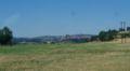 A75-stflour2.jpg