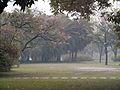 A chuva a tarde, Parque Ibirapuera 2.JPG