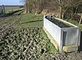A full water trough - geograph.org.uk - 1190653.jpg