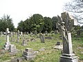 A guided tour of Broadwater ^ Worthing Cemetery (33) - geograph.org.uk - 2337793.jpg
