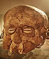 A plastered skull from the ancient city of Jericho in Palestine 7000 BCE.jpg