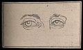 A young girl's eyes. Drawing, c. 1794. Wellcome V0009232EBL.jpg