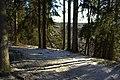 Abavas senleja - panoramio (2).jpg