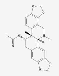 Acetylcorynoline.png