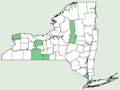 Aesculus glabra var glabra NY-dist-map.png