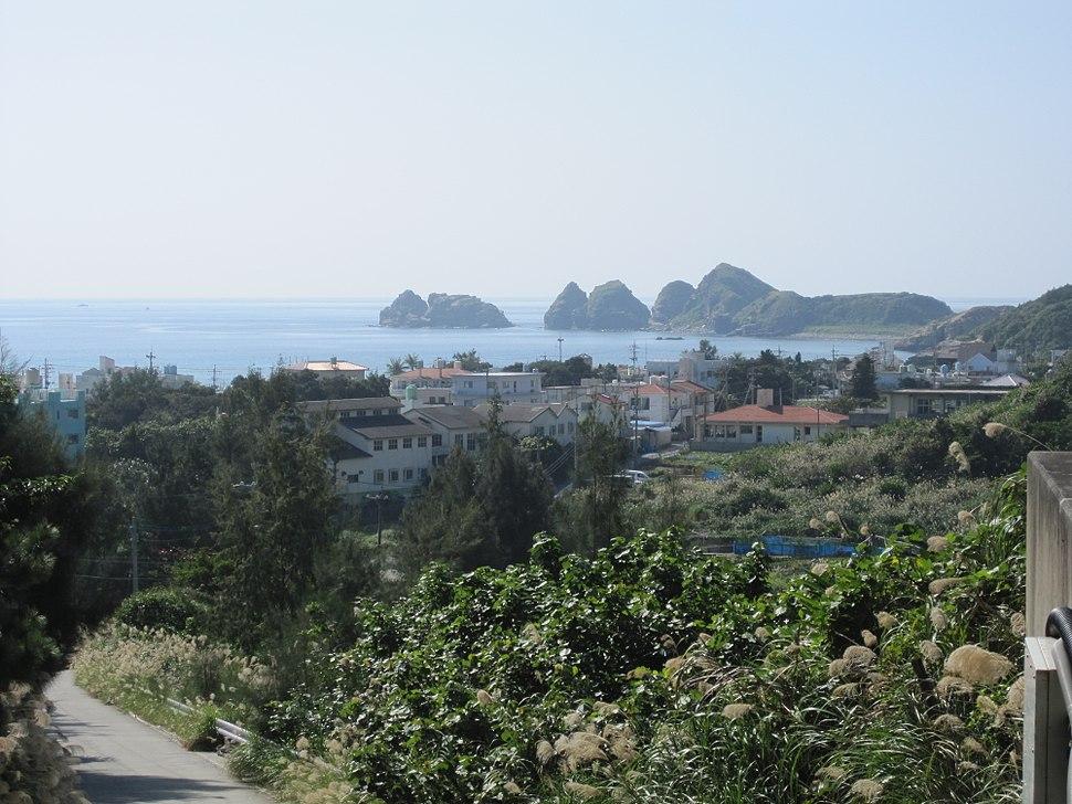 Aka Village 2010 (7793)
