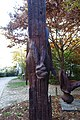 "Alexander Polzin ""Hommage à Paul Celan"" @ Jardin Anne Frank @ Paris (30805591132).jpg"