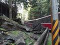 Alishan railway 2014 17.JPG