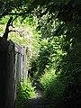 Alleyway east of Elvaston Road (9) - geograph.org.uk - 843491.jpg