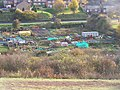 Allotments along Street End Road, Luton - geograph.org.uk - 1040036.jpg