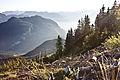Alpen by Horst Michael Lechner.jpg