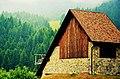 Alpi Carniche - 5.jpg