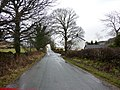 Alpine Road - geograph.org.uk - 1726378.jpg