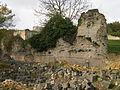 Ancienne abbaye de Mortemer - Lisors - Eure - France - Mérimée PA00099469 (22).jpg
