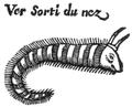 Andry - De la génération des vers (1741), p. 73-2.png