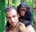 Ape Action Africa - Mefou.jpg