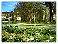 April Freiburg Botanischer Garten - Master Botany Photography 2013 - panoramio (16).jpg