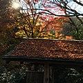Arashiyama Genrokuzancho, Nishikyo Ward, Kyoto, Kyoto Prefecture 616-0007, Japan - panoramio (5).jpg