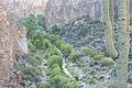 Aravaipa Canyon Wilderness (15408374131).jpg