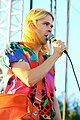 Ariel Pink's Haunted Graffiti, FYF 2010 (4975726091).jpg