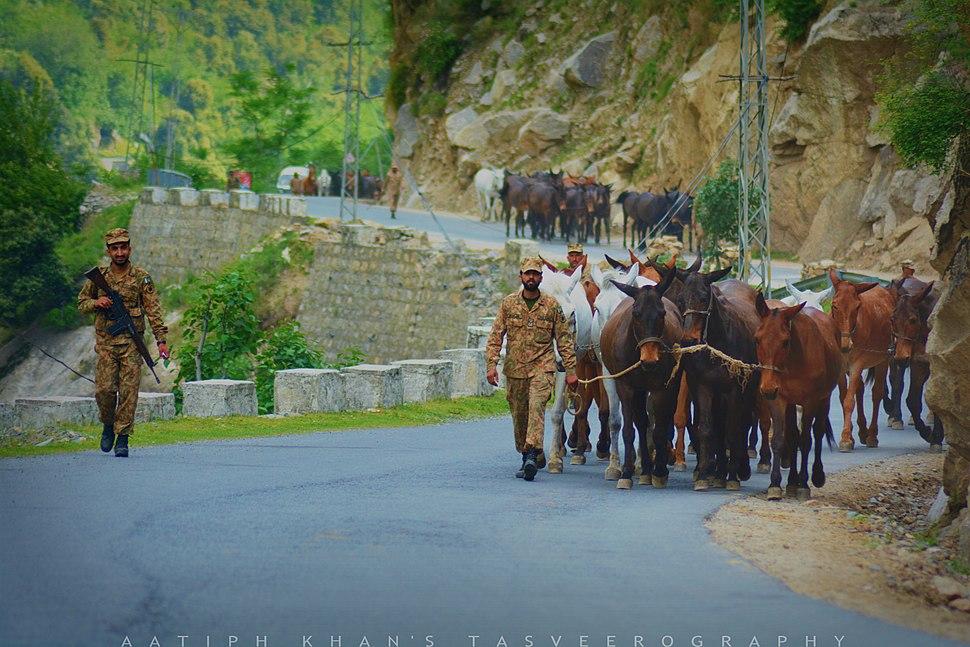 Army in kashmir