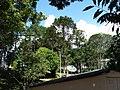 Arujá, Verde, ainda existe muito verde^ Green - panoramio.jpg