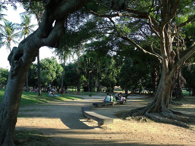 File:Aterro do Flamengo - Flamengo Park, Rio de Janeiro (8709175602).jpg