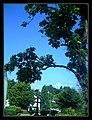 August Flagged by Thunderstorm Germany burning street statues - Master Habitat Rhine Valley Photography 2013 Friedrich Engels Schwarze Pumpe - free Bradley Manning - panoramio.jpg