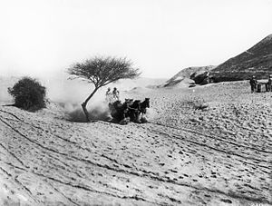 British occupation of the Jordan Valley - An Australian Light Horse team on a road near Jericho.