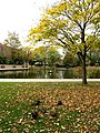 Autumnal Queen's Gardens - geograph.org.uk - 596680.jpg