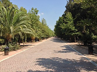 Pedion tou Areos - Avenue in park
