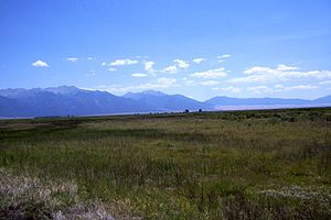 Baca National Wildlife Refuge - Wet hay meadow on the Baca National Wildlife Refuge in July 2008
