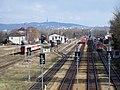 Bahnhof Marchegg Gleisanlagen Alt.jpg
