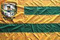 Bandeira de Santa Rosa do Piauí.jpg