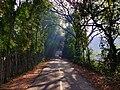 Bangladeshi road scene 1.jpg