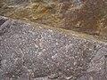 Baraboo Quartzite (upper Paleoproterozoic, ~1.7 Ga; just north of Rock Springs, Wisconsin, USA) 7 (18597991538).jpg