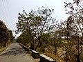 Barangay's of pandi - panoramio (13).jpg