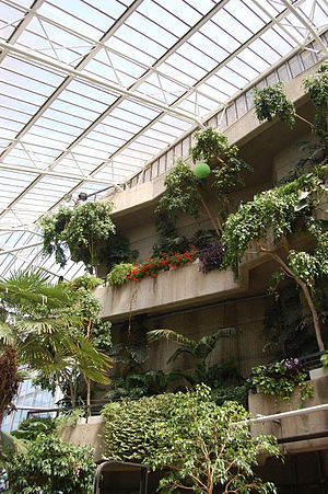 Barbican Conservatory - Image: Barbican, London 8 June 2014 Andy Mabbett 81