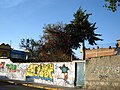Barda pintada y árboles - panoramio.jpg